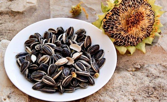 Thực phẩm giàu vitamin E - Hạt hướng dương
